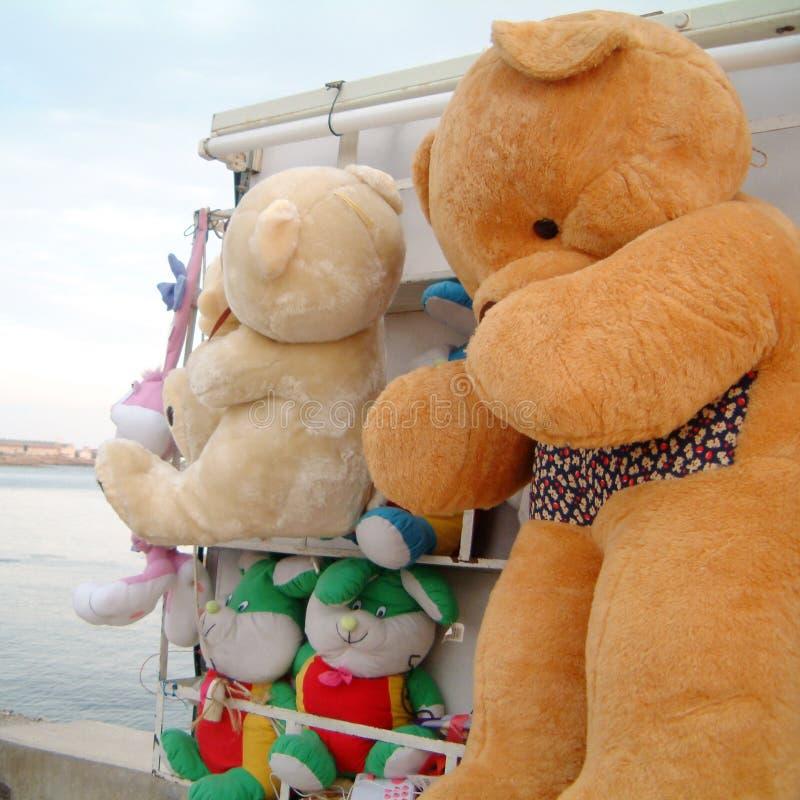 Zabawka niedźwiedzie sprzedający w fiesta obrazy royalty free