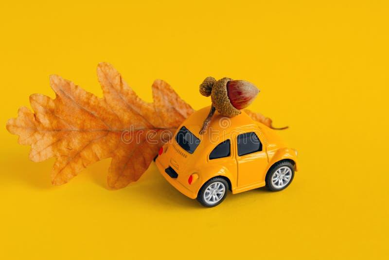 zabawkarski żółty samochód z dębem i wysuszonym jesień liściem odizolowywającymi na żółtym tle obraz royalty free