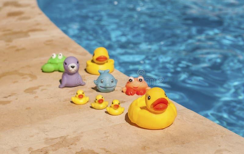 Zabawki blisko basenu zdjęcia royalty free