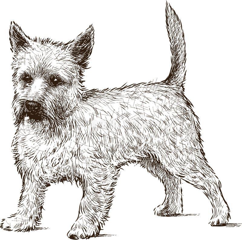 zabawny pies ilustracja wektor