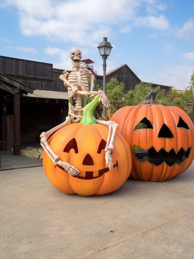 Zabawy Halloween skład z koścem i banią zdjęcie royalty free