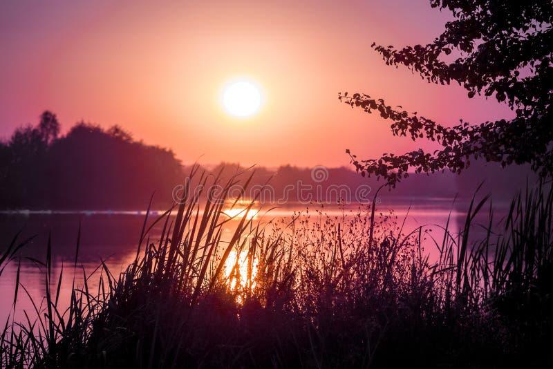 zachód słońca nad rzeką Spokojny wieczór rzeką, krajobraz w purpurowym shades_ zdjęcia royalty free
