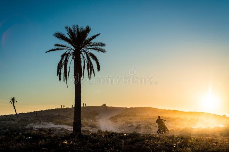 Zachód słońca na pustyni w Tunezji zdjęcia royalty free