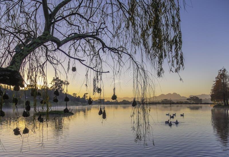zachód słońca nad jezioro obrazy stock