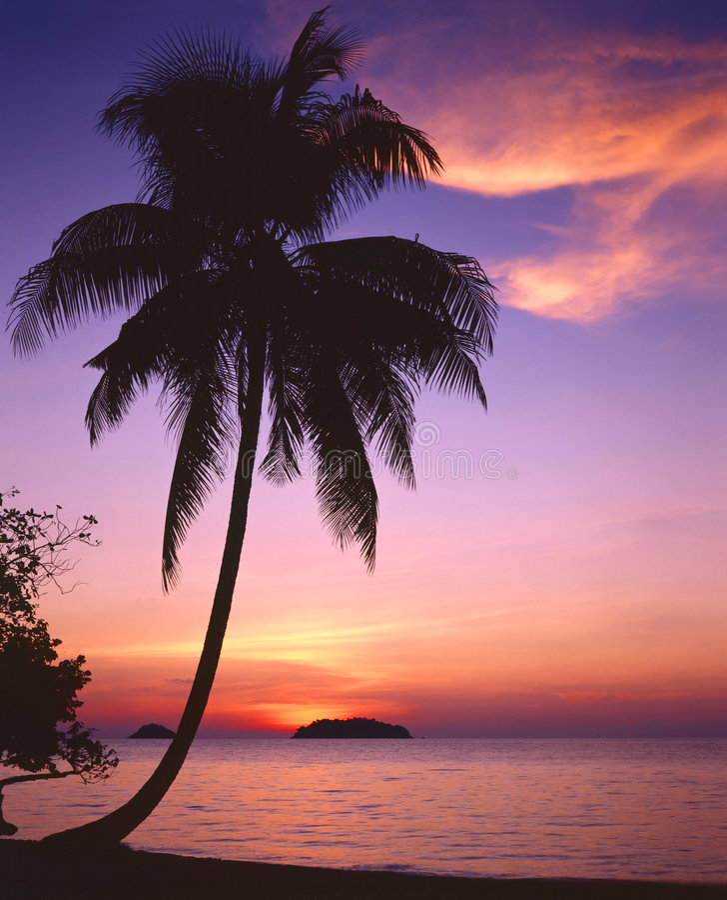 zachód słońca tropikalny Thailand zdjęcie stock