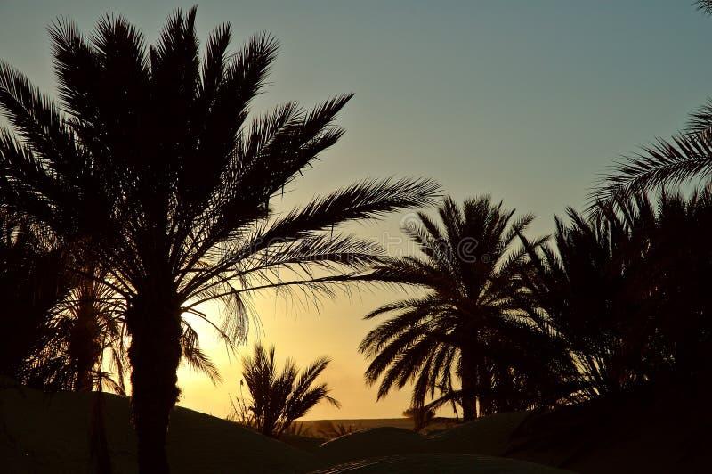 zachód słońca Tunisia obrazy royalty free