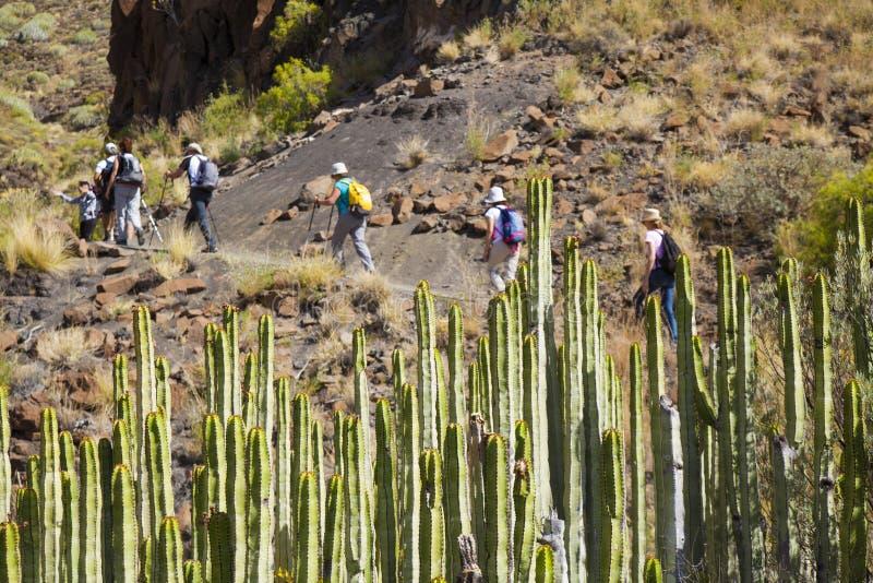 Zachodni Gran Canaria, Maj zdjęcia royalty free