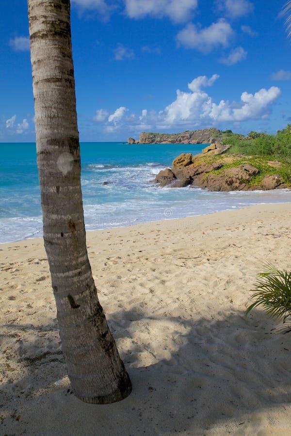 Zachodni Indies, Karaiby, Antigua, St Johns, galery zatoka & plaża, zdjęcie royalty free