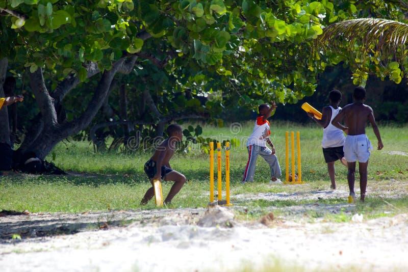 Zachodni Indies, Karaiby, Antigua, St Mary, Ffryes plaża, młodzienowie Bawić się krykieta na plaży fotografia royalty free