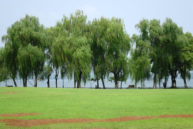 Zachodni jezioro obrazy royalty free