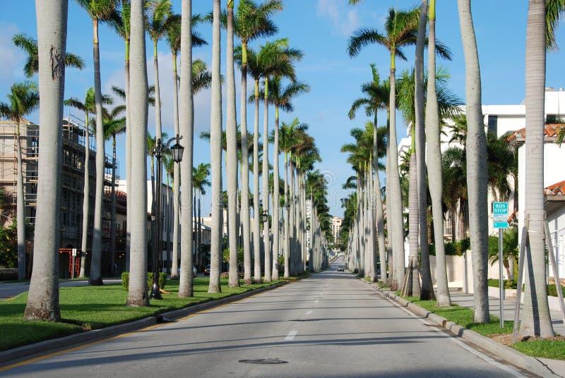zachodni plażowa 2007 palma Florida Styczeń zdjęcia royalty free