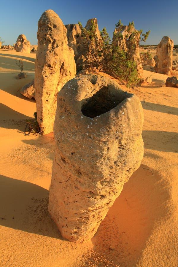 zachodni pustynni Australia pinakle fotografia stock