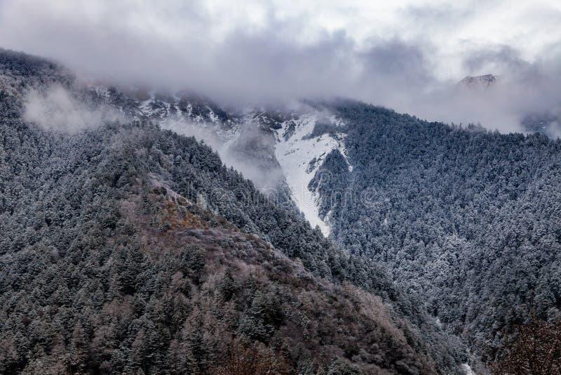 Zachodni Sichuan, Chiny, Baron wzg?rze sceneria z ?niegiem obraz stock