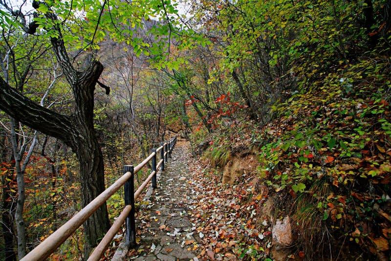 Zachodni Taishan, Ruyang fotografia stock