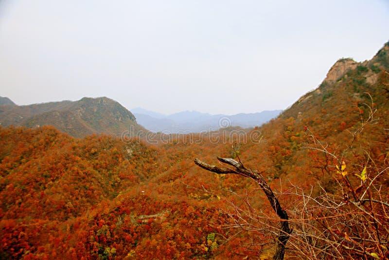 Zachodni Taishan, Ruyang zdjęcia royalty free