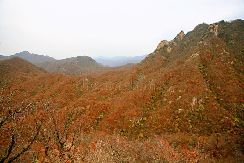 Zachodni Taishan, Ruyang fotografia royalty free