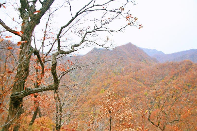 Zachodni Taishan, Ruyang zdjęcia stock
