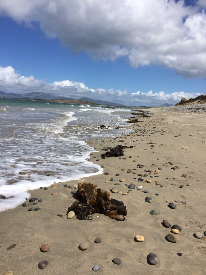 Zachodnie wybrzeże Irlandia obraz stock