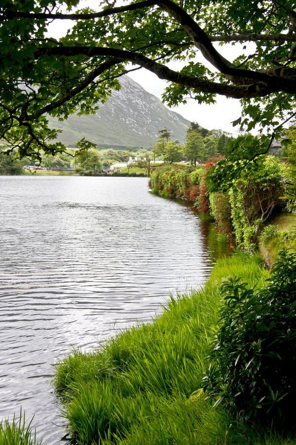 Zachodnie wybrzeże Irlandia, Pollacapall jezioro obraz royalty free