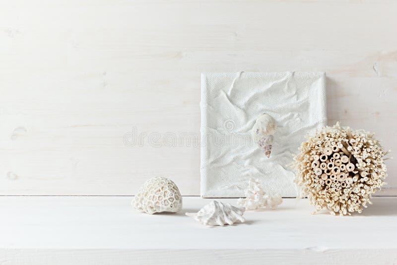 Zacht huisdecor; shells en koralen op witte houten achtergrond stock fotografie