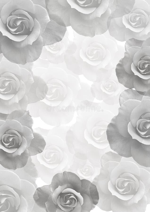Zachte achtergrond met mooie rozen stock illustratie