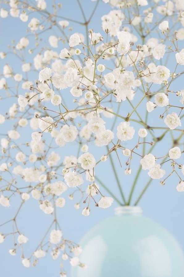 Zachte lichte kleine bloemen in close-up van de cirkel de ceramische blauwe vaas op pastelkleur blauwe achtergrond Lentetijdachte royalty-vrije stock foto's