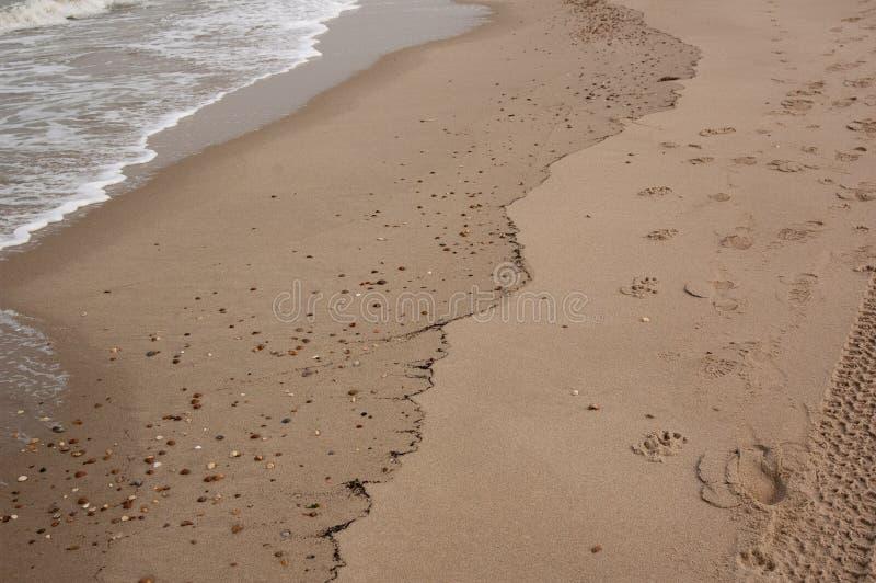 Zachte mooie oceaangolf op zandig strand Achtergrond royalty-vrije stock foto