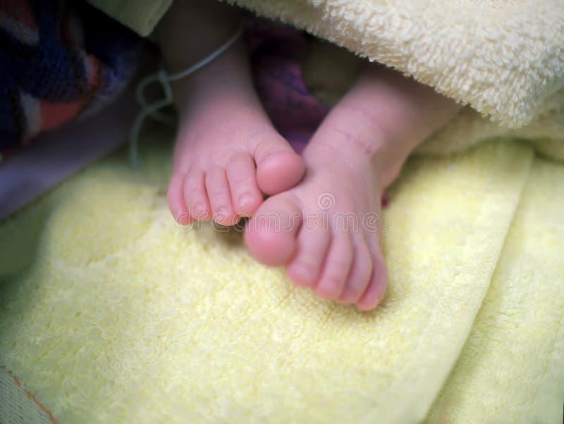 Zachte nadruk van pasgeboren uiterst kleine babyvoeten Selectieve nadruk en ondiepe diepte van gebied royalty-vrije stock afbeeldingen