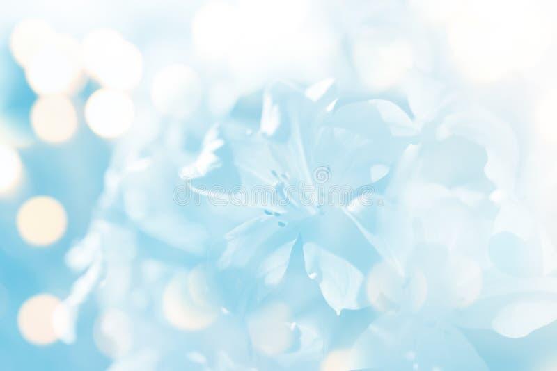 Zachte onduidelijk beeldbloem in blauwe toon royalty-vrije stock foto