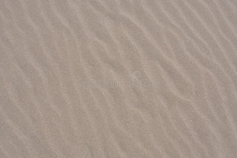 Zachte Rimpelingen in Zand langs Vreedzame Kuststrand stock foto's
