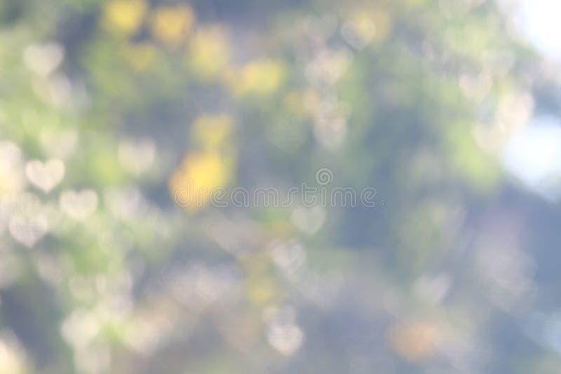 Zachte vage bokeh de aard verse verlichting van de achtergrond Natuurlijke valentijnskaart groene boom hart-vormig voor valentijn royalty-vrije stock foto's