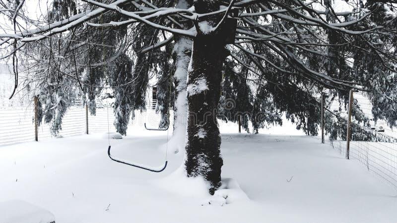 Zaciszność po śniegu obraz royalty free
