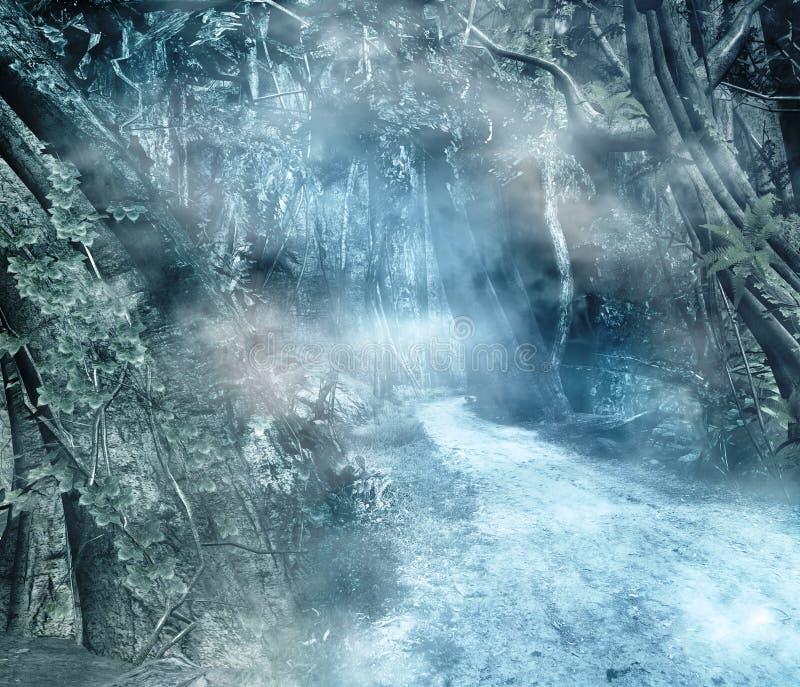 zaczarowana lasowa droga przemian royalty ilustracja