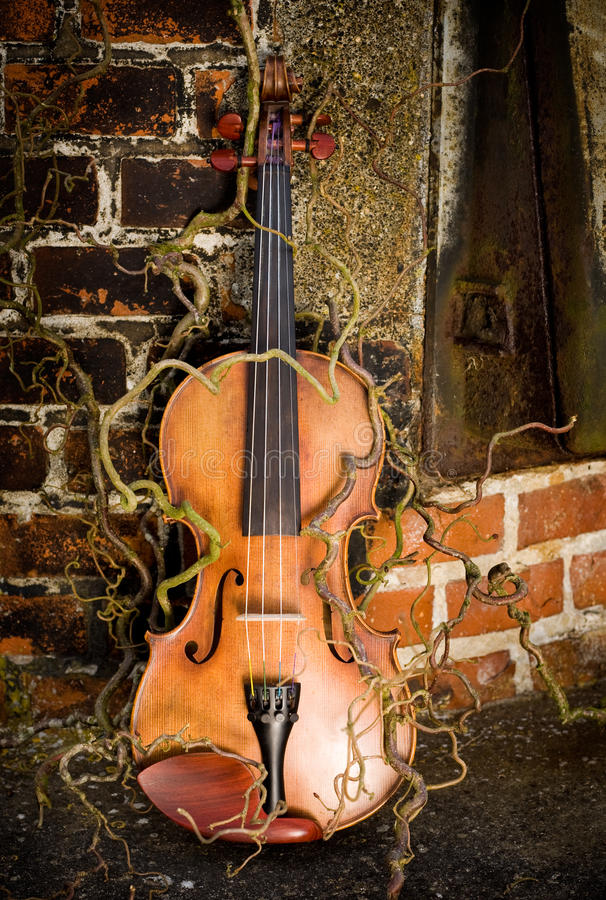 zaczarowany skrzypce zdjęcia stock