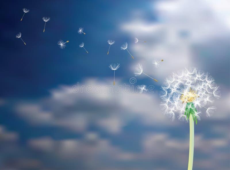 Zadenvlieg in hemel stock illustratie