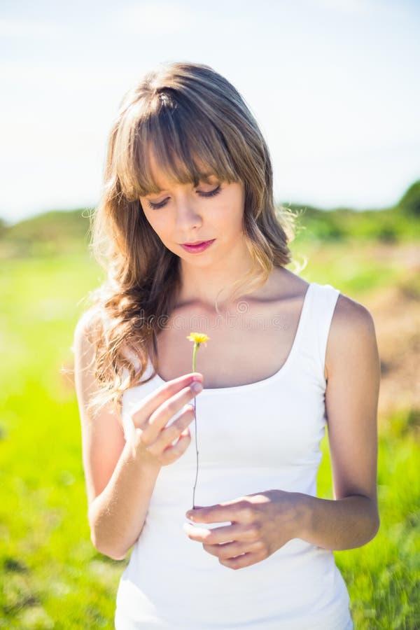 Zadowolony ładny blondynki mienia dandelion fotografia royalty free