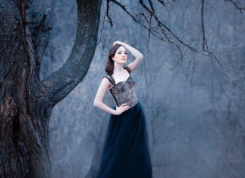 Zadziwiająca czuła brunetka, dama w długiej czerni sukni z nagim otwiera ręki i ramiona dziewczyna samotnie w jesieni zimnie fotografia stock