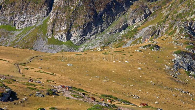 Zadziwiająca panorama Zieleni wzgórza, Rila jeziora i Rila monaster, Bułgaria fotografia stock