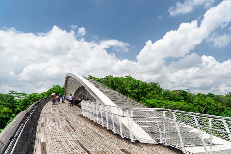 Zadziwiający most imituje falę w Singapur Przejście przy Coldwater jeziorem fotografia stock