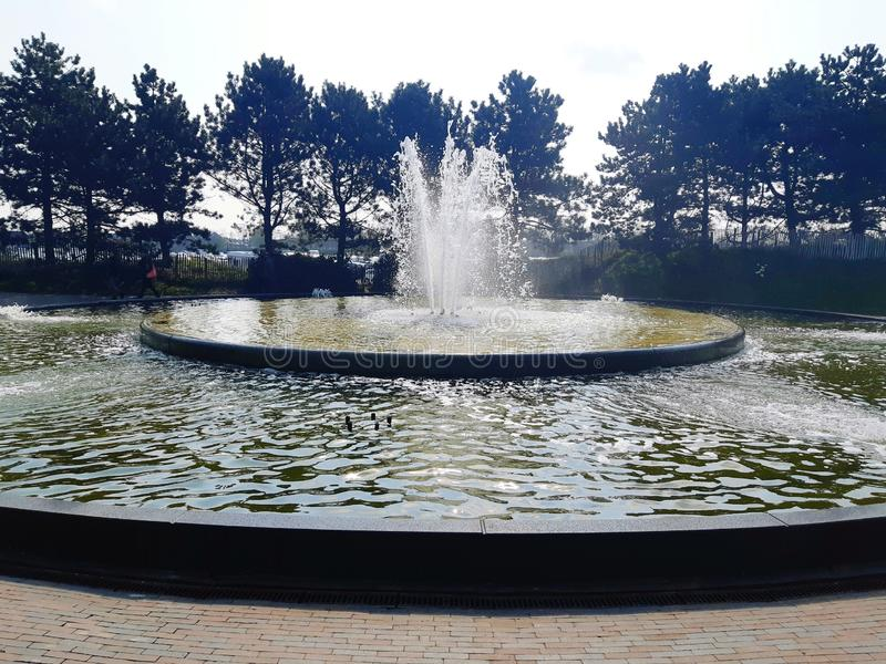 Zadziwiająca fontanna wśrodku Keukenhof ogródu pi?kny widok Odbija? wod? zdjęcia royalty free