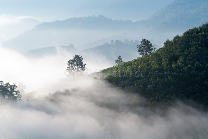 Zadziwiająca mgła rusza się nad natur górami obrazy stock