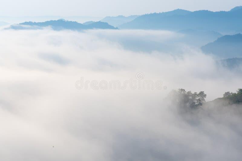 Zadziwiająca mgła rusza się nad natur górami zdjęcie stock