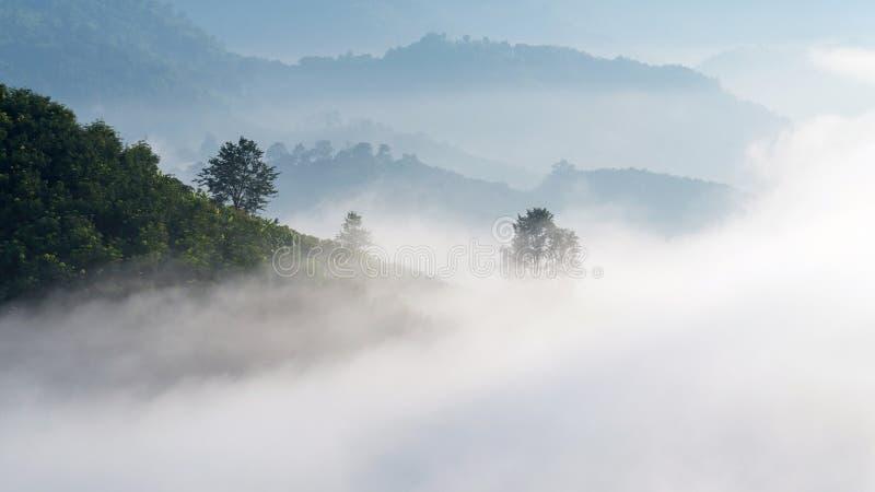 Zadziwiająca mgła rusza się nad natur górami fotografia royalty free