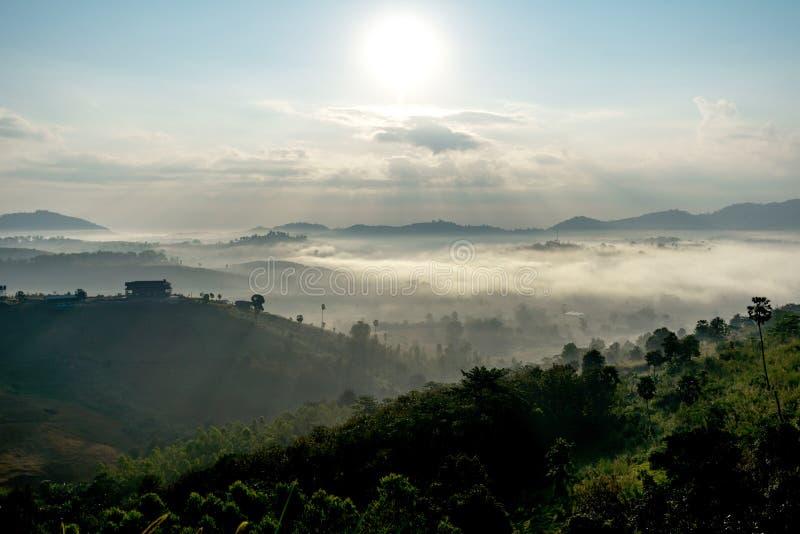 Zadziwiająca mgła & wschody słońca zdjęcia royalty free