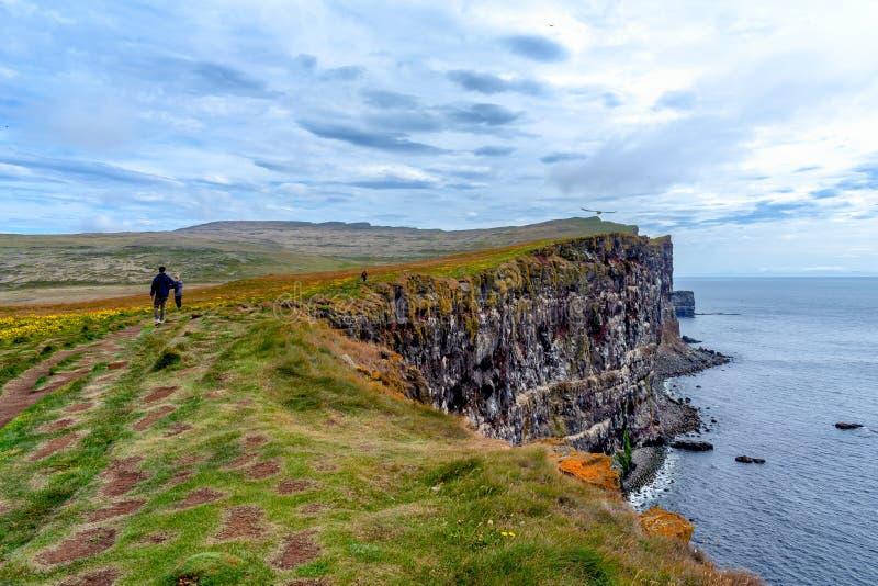 Zadziwiające falezy w zachodnich fjords Iceland zdjęcie royalty free
