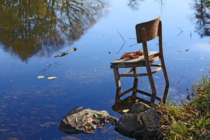 Zadziwiające rzeczy wokoło my w naturze - zapominający krzesła zdjęcia stock