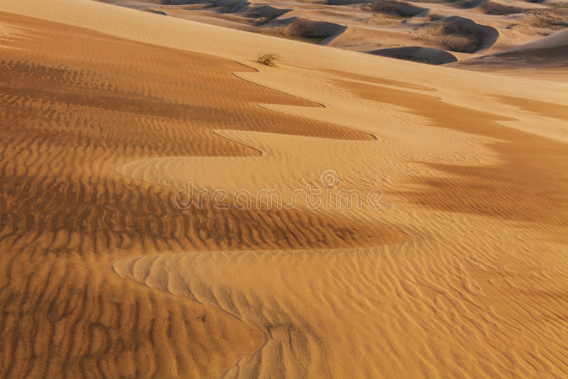 Zadziwiający abstraktów wzory na piasku Gobi pustynia zdjęcia stock