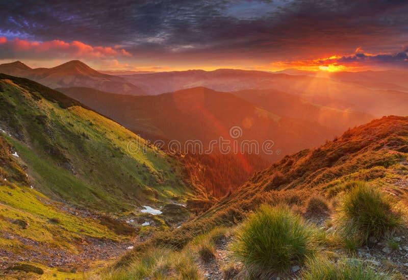 Zadziwiający kolorowy wschód słońca w górach z barwionymi sunrays i świeżej trawie na przedpolu Dramatyczna kolorowa scena w góra zdjęcie stock