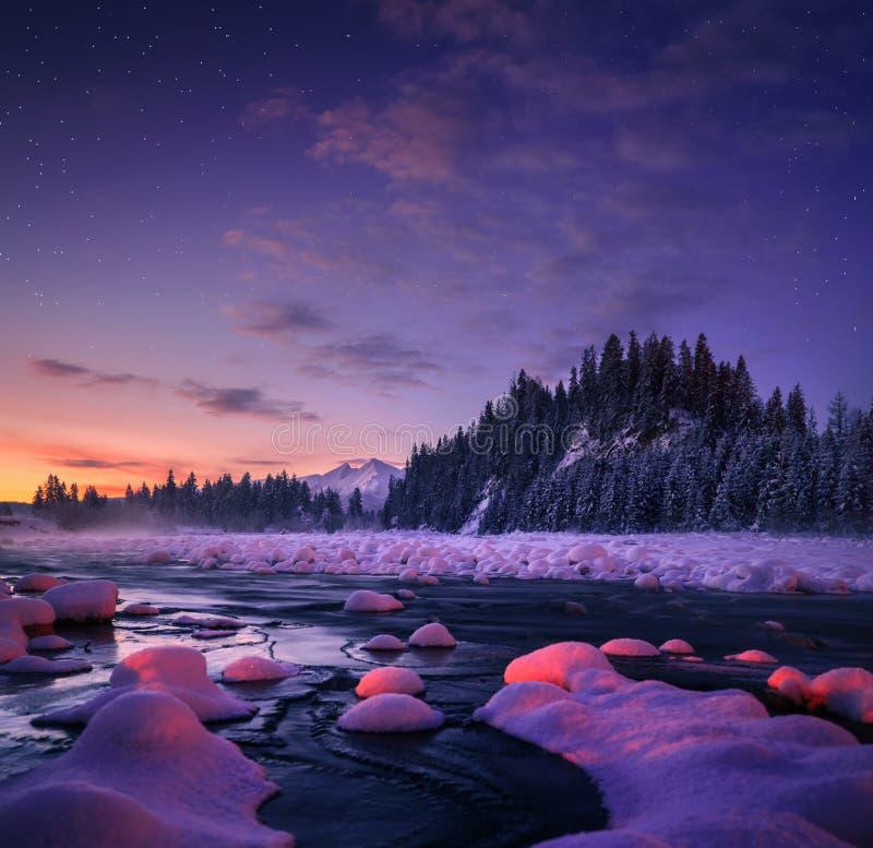 Zadziwiający noc krajobraz pięknie się tło charakteru wektora zdjęcia royalty free