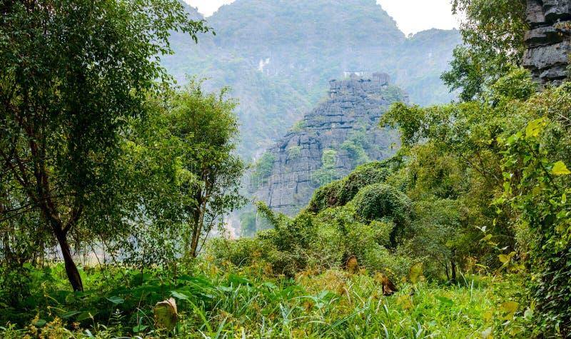 Zadziwiający panorama widok ryż pola, wapień skały i szczyt górski pagoda od zrozumienia Mua świątyni punktu widzenia, zdjęcie royalty free